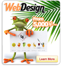 Web Design Plan